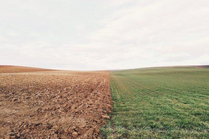 Agriculture reprise de biens loués Terrésa avocats