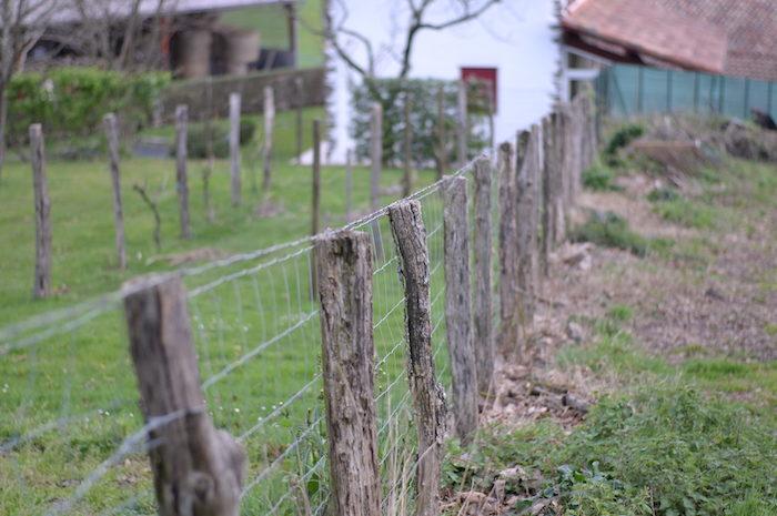 Enregistrement gratuit pour la cession d'un fonds agricole