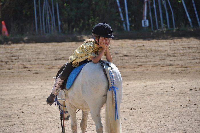 Aides exceptionnelles au centre equestre et poney clubs
