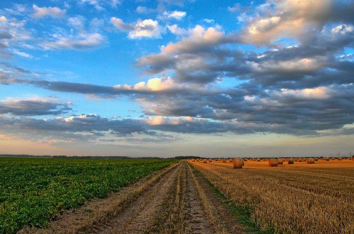 Donation des terres à un tiers et droit de préemption du preneur en place
